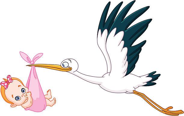 ilustrações, clipart, desenhos animados e ícones de cegonha e bebê menina - novo bebê