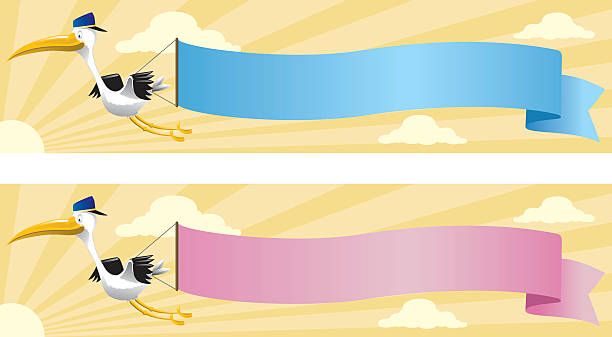 Best Its A Boy Illustrations, Royalty-Free Vector Graphics ...