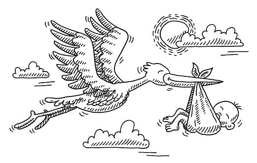 Stork Bird Birthday Baby Drawing