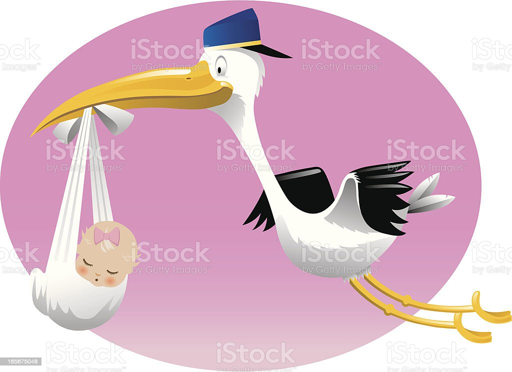Stork Delivers Baby Girl vector art illustration