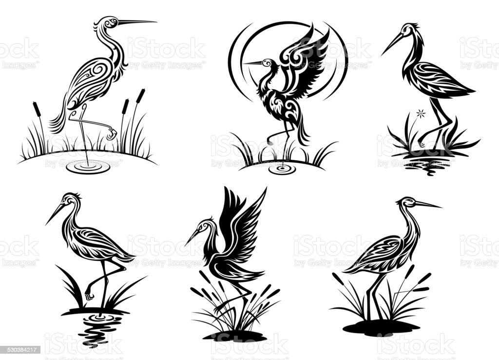 Cicogna, cucchiaio, gru e uccelli alla Garzetta - illustrazione arte vettoriale