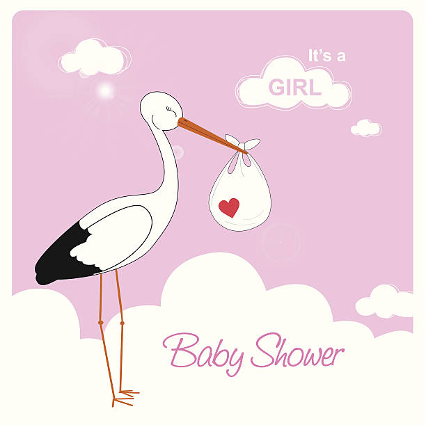 ilustrações, clipart, desenhos animados e ícones de cegonha está carregando uma bebê menina - novo bebê