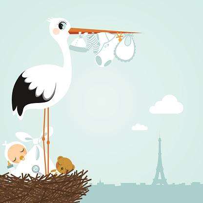 stork Paris newborn