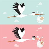 Stork delivering a newborn. Please see some similar pictures in my lightboxs: