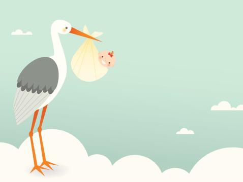 Stork's Bundle of Joy