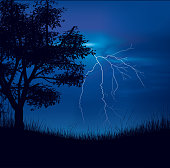 Storm Field Illustration