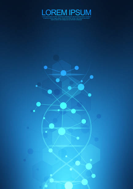 DNA strand background and genetic engineering or laboratory research. Medical technology and science concept. DNA strand background and genetic engineering or laboratory research. Medical technology and science concept helix model stock illustrations