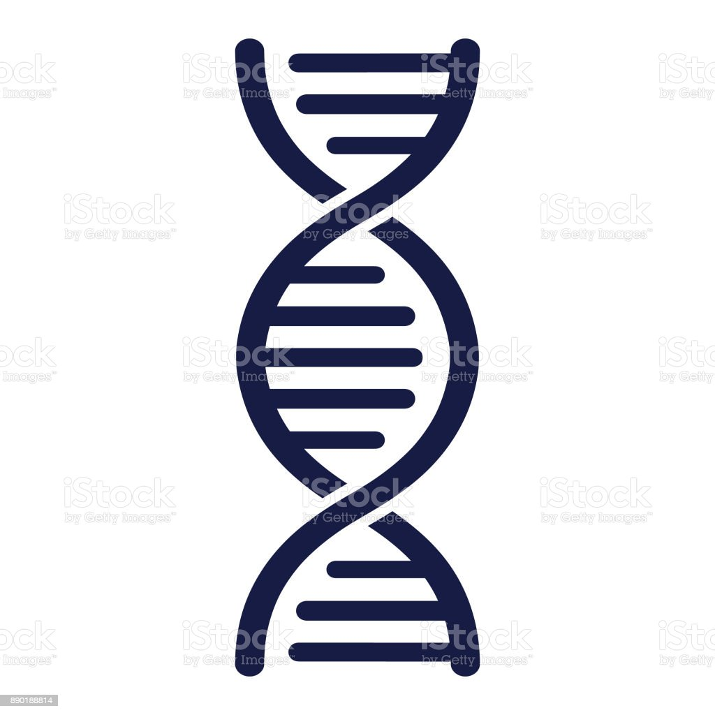 DNA Strand - Vector vector art illustration