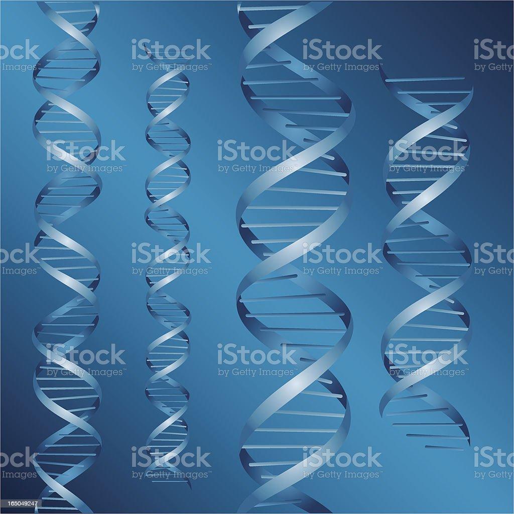 DNA strands vector royalty-free stock vector art