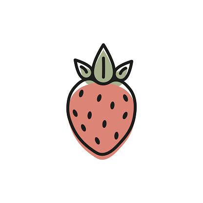Strawberries  drawings. vector illustration eps10