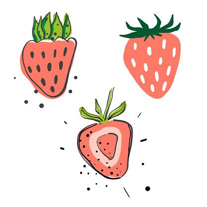 Strawberries pencil drawings
