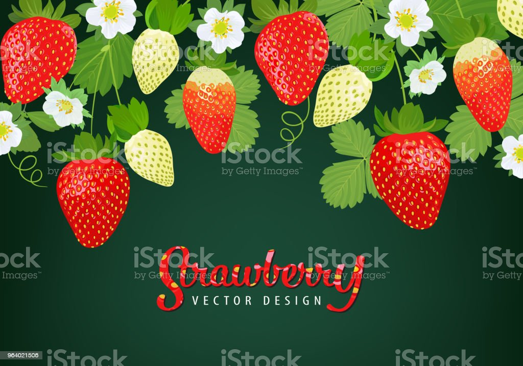 Strawberries plant with leaves, stems and flowers on green background template. - Royalty-free Agriculture stock vector