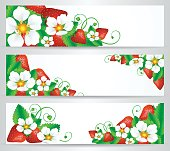 Strawberry Banner