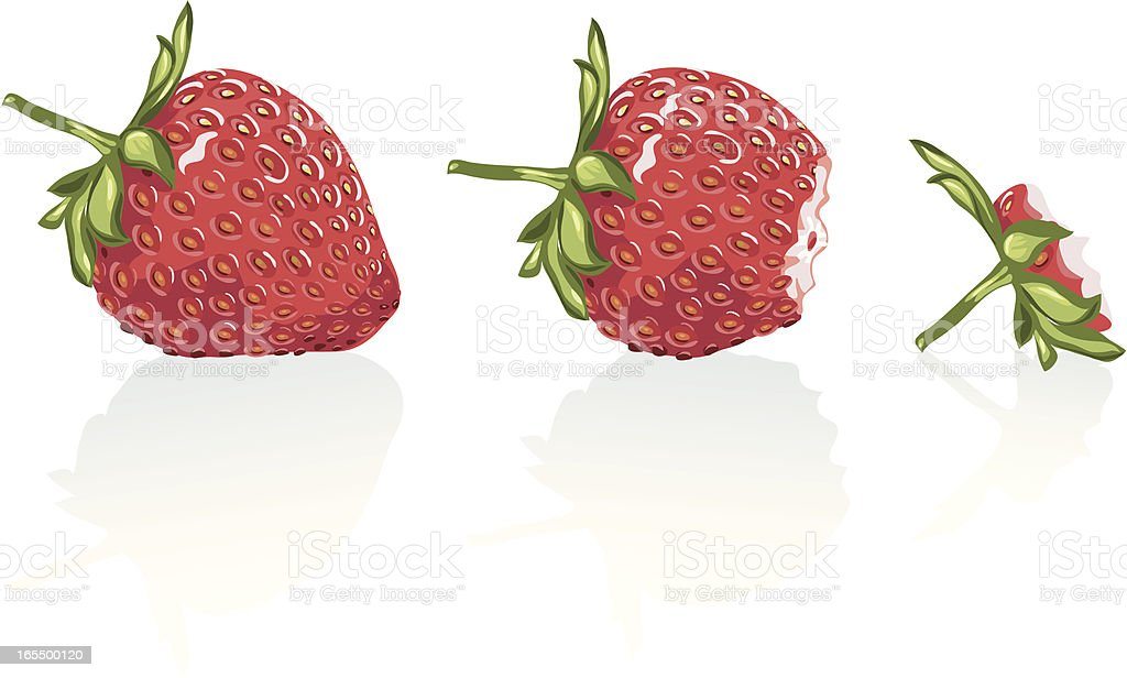 Strawberry going gone. royalty-free stock vector art