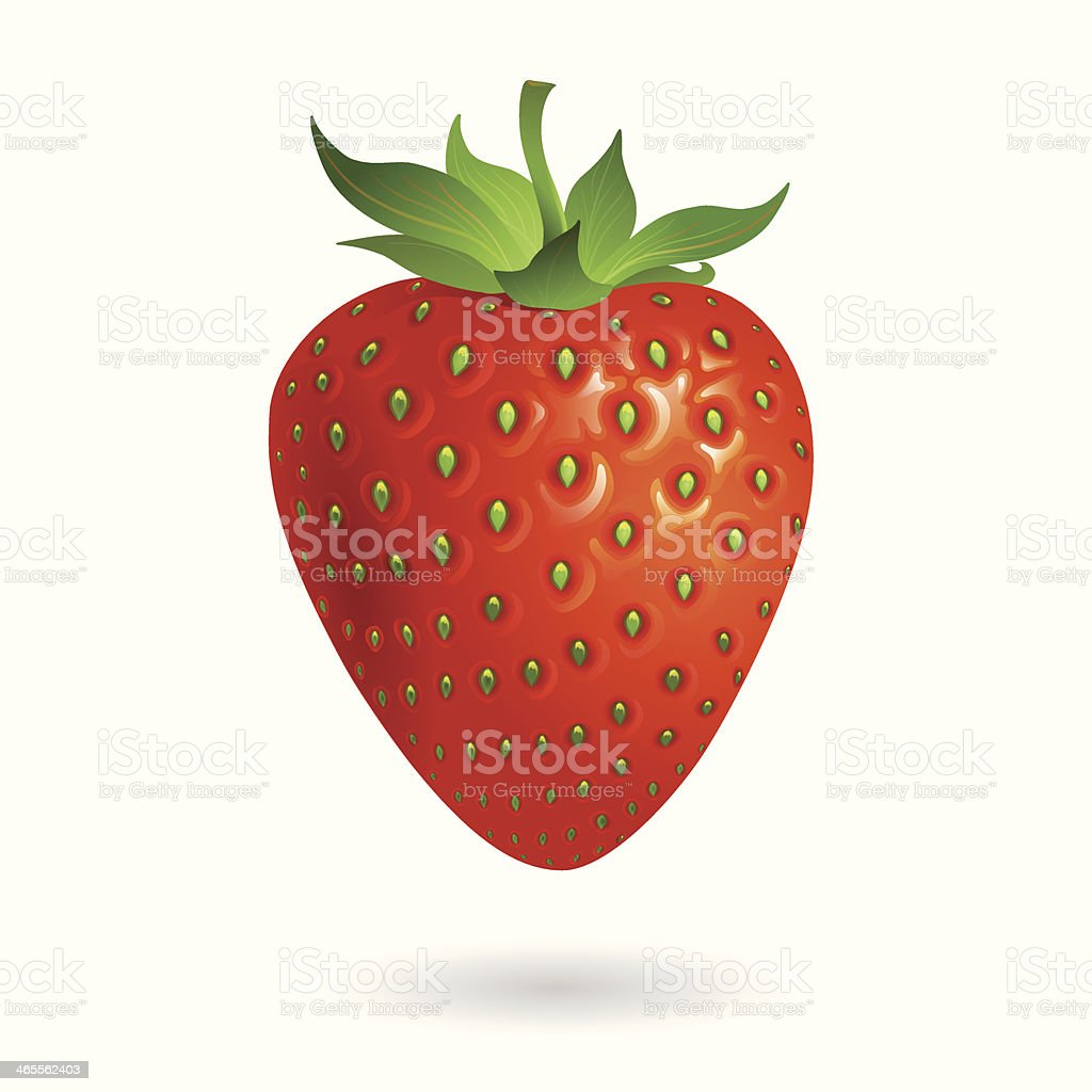 Strawberry isolate on white background royalty-free strawberry isolate on white background stock vector art & more images of agriculture