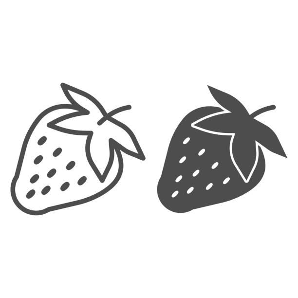 딸기 라인과 솔리드 아이콘, 과일 개념, 딸기 흰색 배경에 서명, 모바일 개념 및 웹 디자인에 대한 개요 스타일의 씨앗 아이콘 잘 익은 딸기. 벡터 그래픽. - 잘 익은 stock illustrations