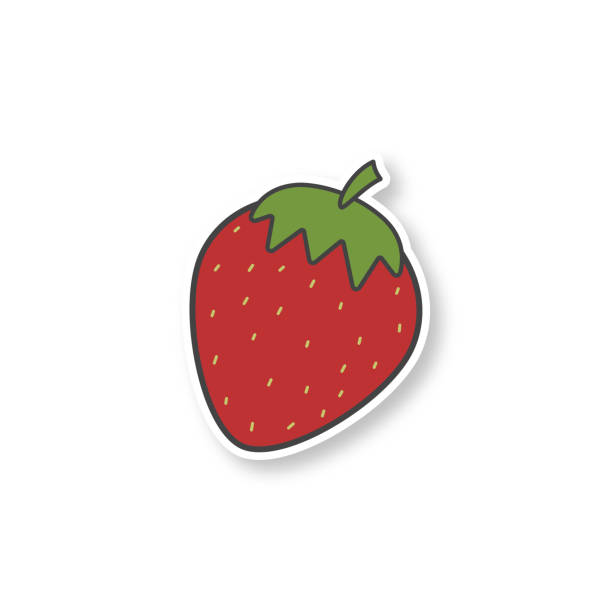 Strawberry patch vector art illustration
