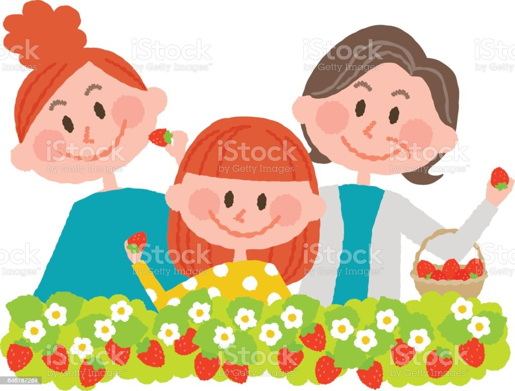 strawberry picking vector art illustration