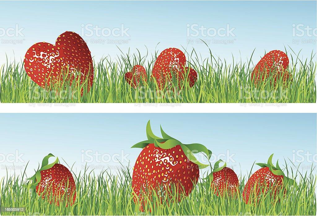 strawberry royalty-free stock vector art