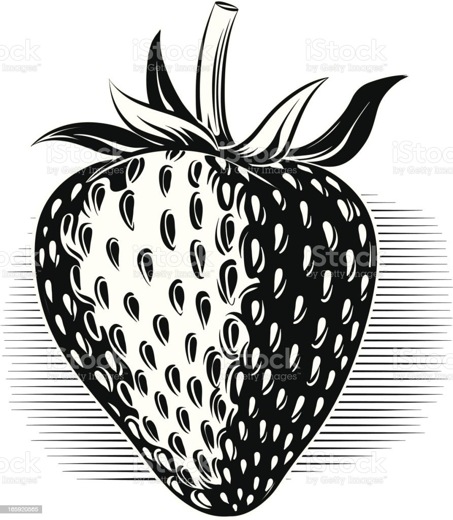 Strawberries Clip Art Black And White
