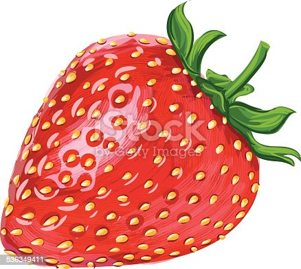 Beautiful Strawberry Fruit, EPS 10 file,having transparency and mesh used.All elements are in separate layers.very easy to edit.Please visit my portfolio.