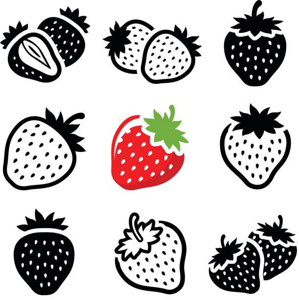 illustrazioni stock, clip art, cartoni animati e icone di tendenza di strawberry - fragole