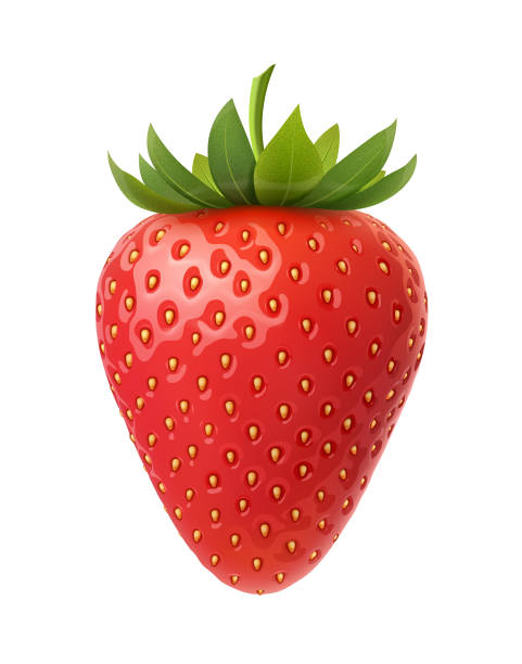 illustrazioni stock, clip art, cartoni animati e icone di tendenza di strawberry vector illustration - fragole