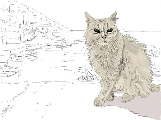 streunende katze auf einer griechischen insel. - schrottplatzkunst stock-grafiken, -clipart, -cartoons und -symbole