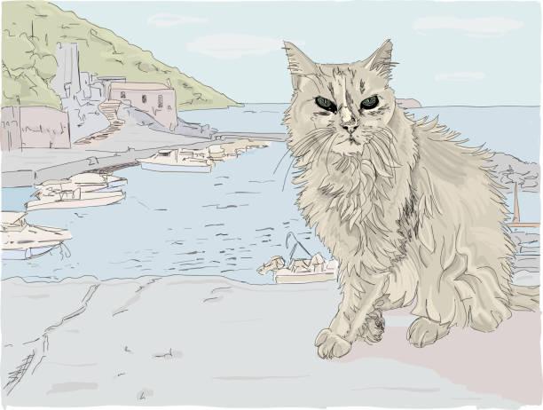 streunende katze auf einer griechischen insel - schrottplatzkunst stock-grafiken, -clipart, -cartoons und -symbole