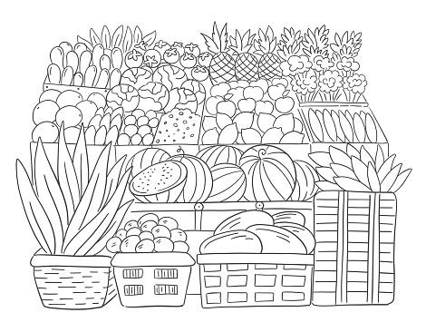 Street market. Fruits showcase. Grocery supermarket retail. Shop store. Hand drawn sketch. Vector illustration.