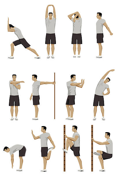 stockillustraties, clipart, cartoons en iconen met stretching routine - rek