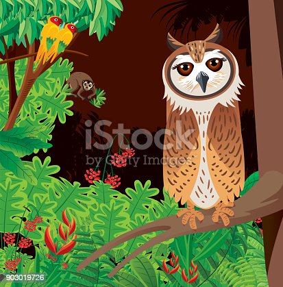 istock Striped Owl and forest 903019726
