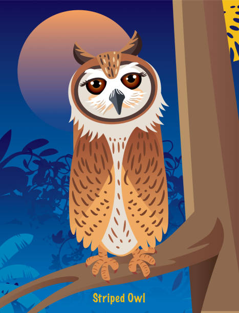 striped owl - great horned owl stock illustrations, clip art, cartoons, & icons