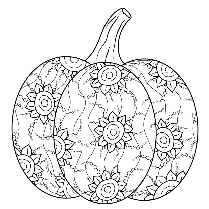 Stripped pumpkin coloring book with sunflower ornament. Doodle hand drawn vector  illustration in autumn mood