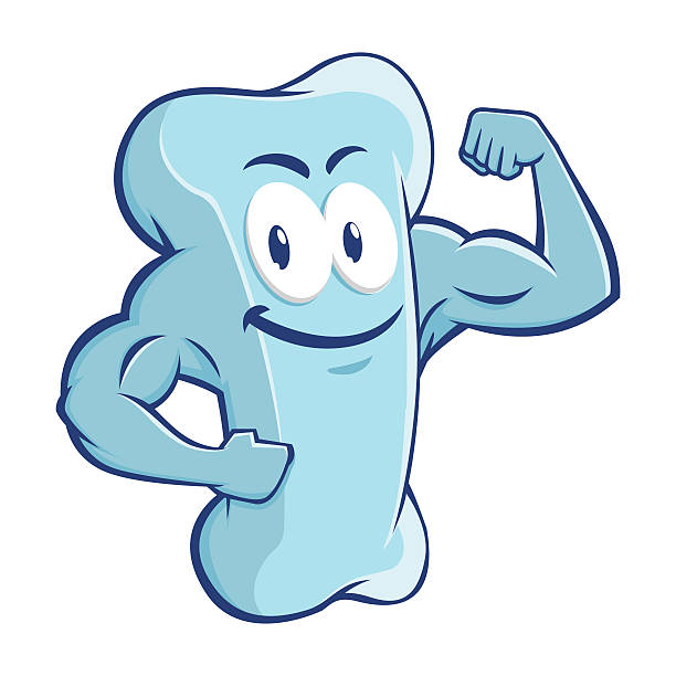 strong muscular bone character design - cartoon muscle arms stock illustrations, clip art, cartoons, & icons