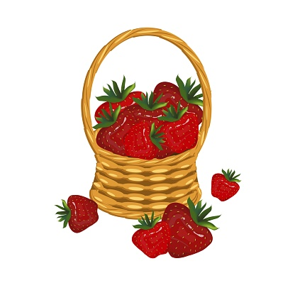 Strowberry in basket wicker with a vine. Red berry art design elements object isolated stock vector illustration