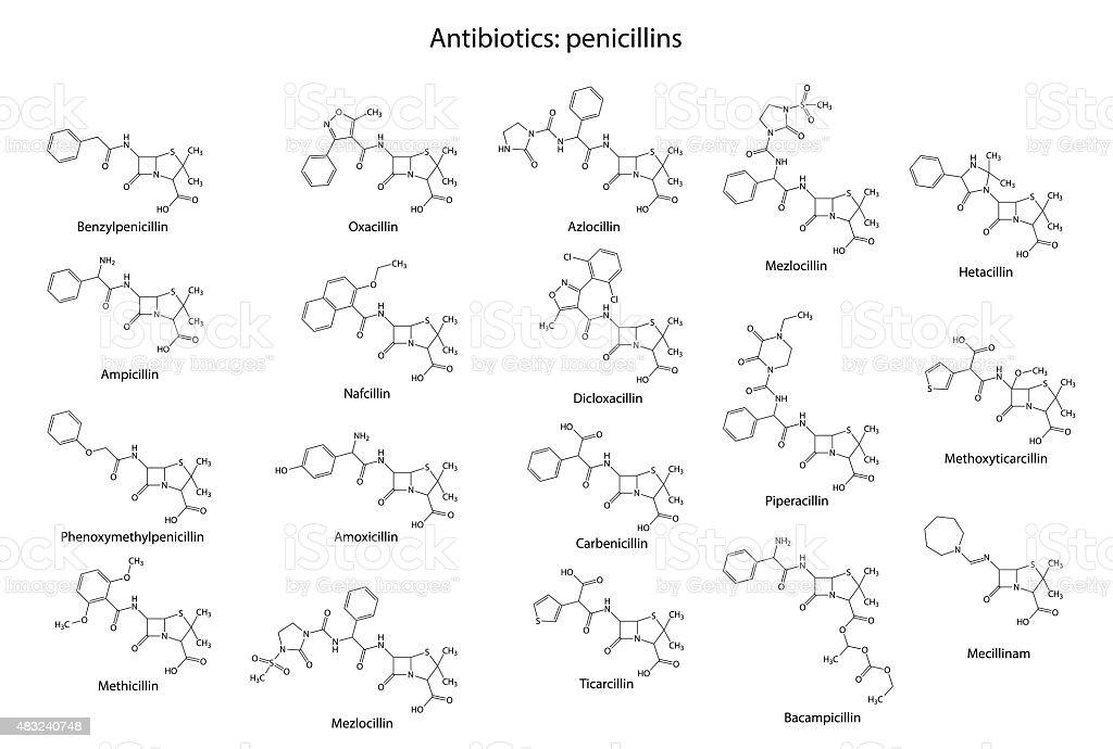 Structural chemical formulas of antibiotic penicillins vector art illustration