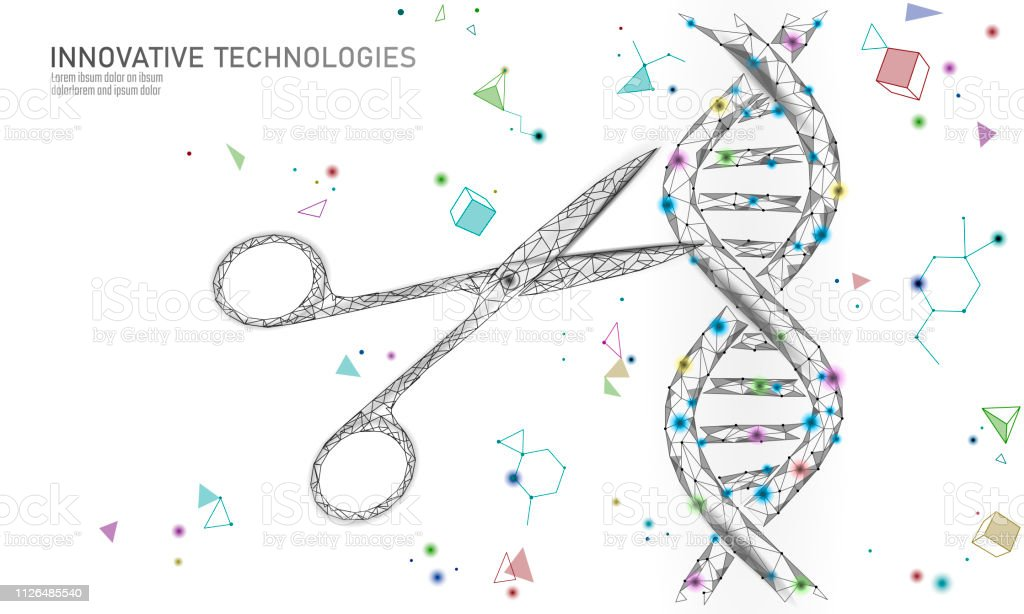 DNA 3D structure editing medicine concept. Low poly polygonal triangle gene therapy cure genetic disease. GMO engineering CRISPR Cas9 innovation modern technology science banner vector illustration DNA 3D structure editing medicine concept. Low poly polygonal triangle gene therapy cure genetic disease. GMO engineering CRISPR Cas9 innovation modern technology science banner vector illustration art Abstract stock vector