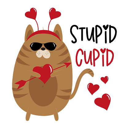 Stupid Cupid - funny phrase with cupid cat