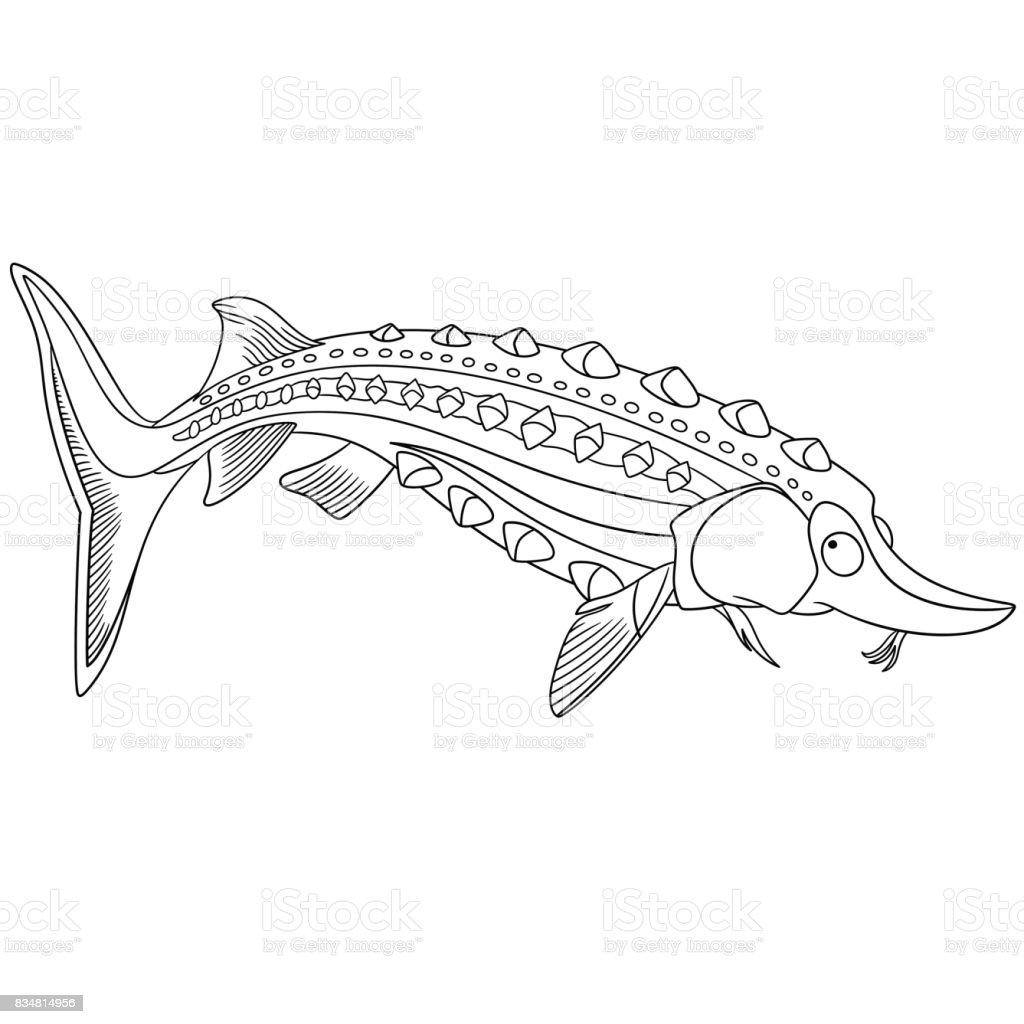 Mersin Balığı Balık Boyama Stok Vektör Sanatı Akuatik Organizma