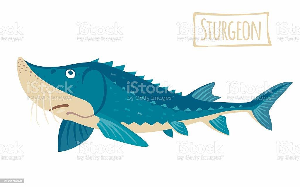 royalty free sturgeon fish clip art vector images illustrations rh istockphoto com Suwannee River Sturgeon Sturgeon Point Productions