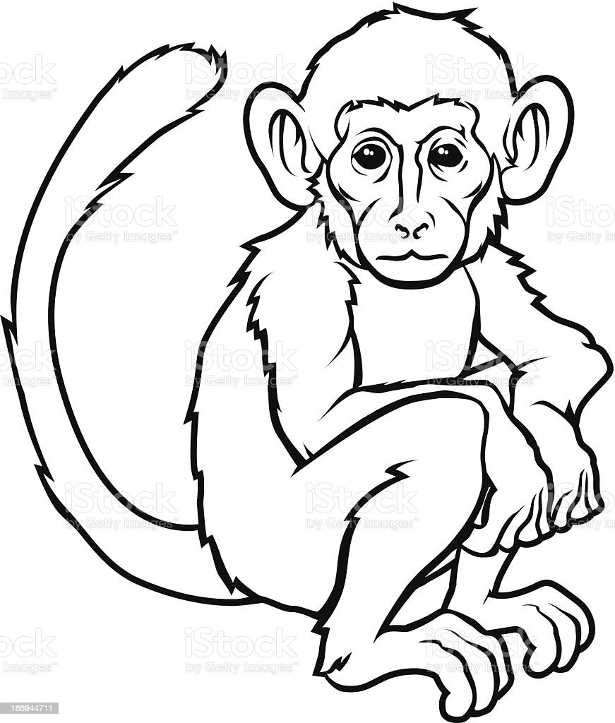 e09b34b75 Stylised Monkey Illustration Stock Vector Art & More Images of ...