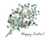 Stylish easter geeting card with quail eggs and eucalyptus bunch. Easter greeting banner, vector