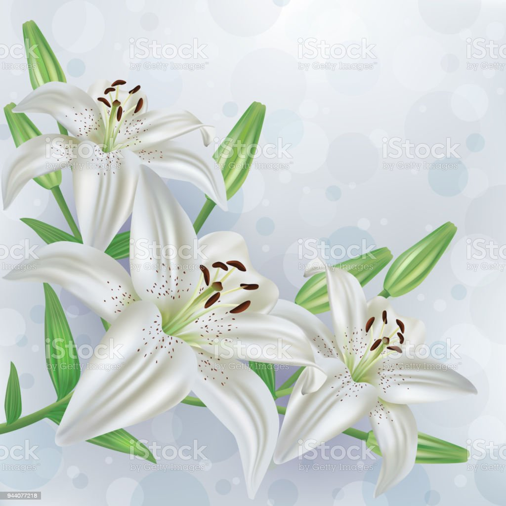 Stylish floral background with bouquet of flowers lilies stock stylish floral background with bouquet of flowers lilies royalty free stylish floral background with bouquet izmirmasajfo