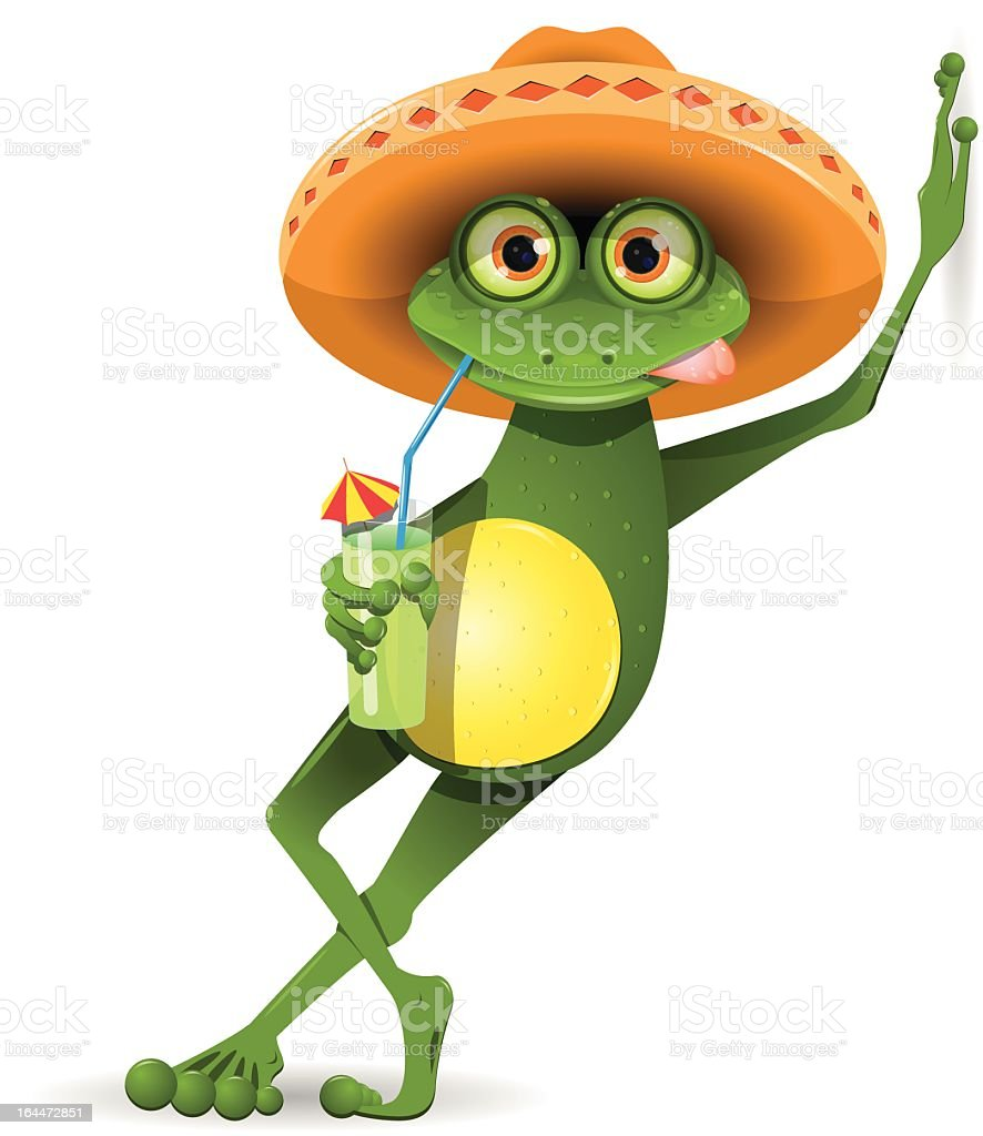 Stylish frog with a Mexican sombrero royalty-free stylish frog with a mexican sombrero stock vector art & more images of alcohol