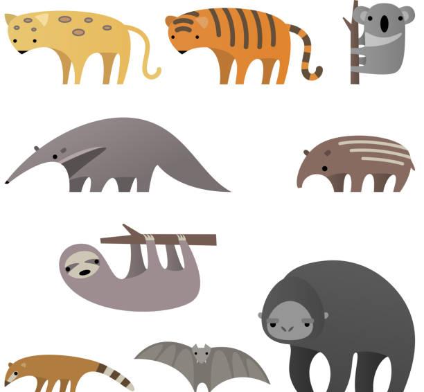 stilvolle dschungel tiere - ameisenbär stock-grafiken, -clipart, -cartoons und -symbole