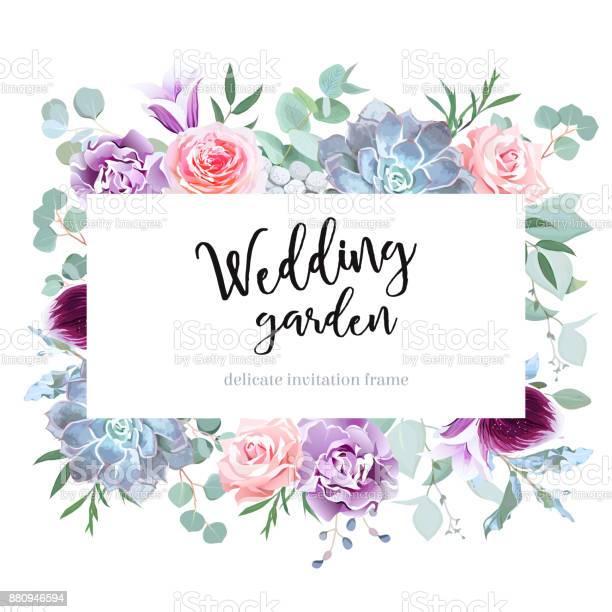 Stylish plum colored and pink flowers vector design card vector id880946594?b=1&k=6&m=880946594&s=612x612&h=8iyqrfp2uau4vgiwytnh4pty07arfzvtxzjjt3xsa20=