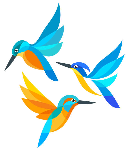stockillustraties, clipart, cartoons en iconen met gestileerde vogels in de vlucht - ijsvogels