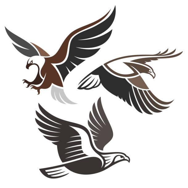 illustrations, cliparts, dessins animés et icônes de oiseaux de proie stylisés - aigle