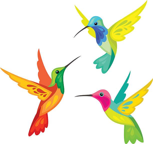 stylized birds - hummingbird stock illustrations